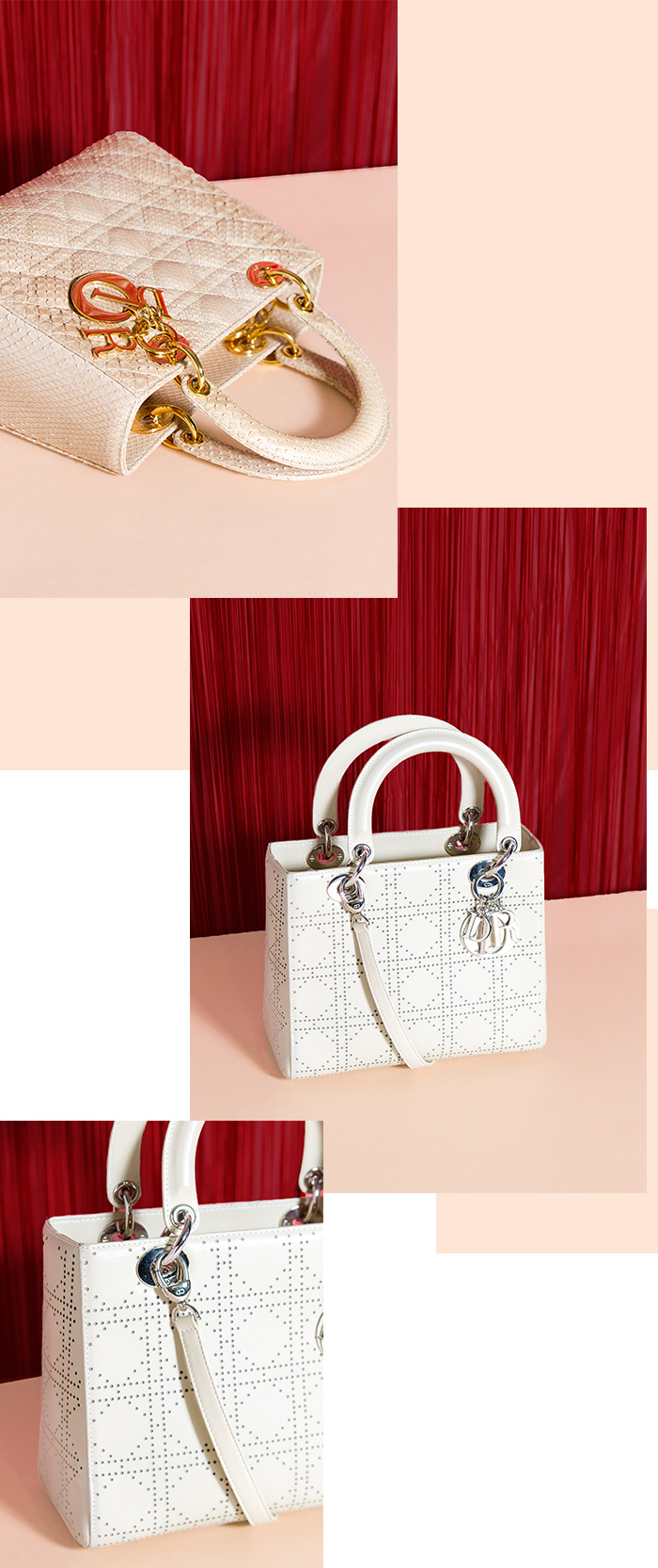 Lady-Dior-01-neu